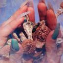 Qui Est Terence McKenna: Un Pionnier Des Psychédéliques Et De La Contre-Culture